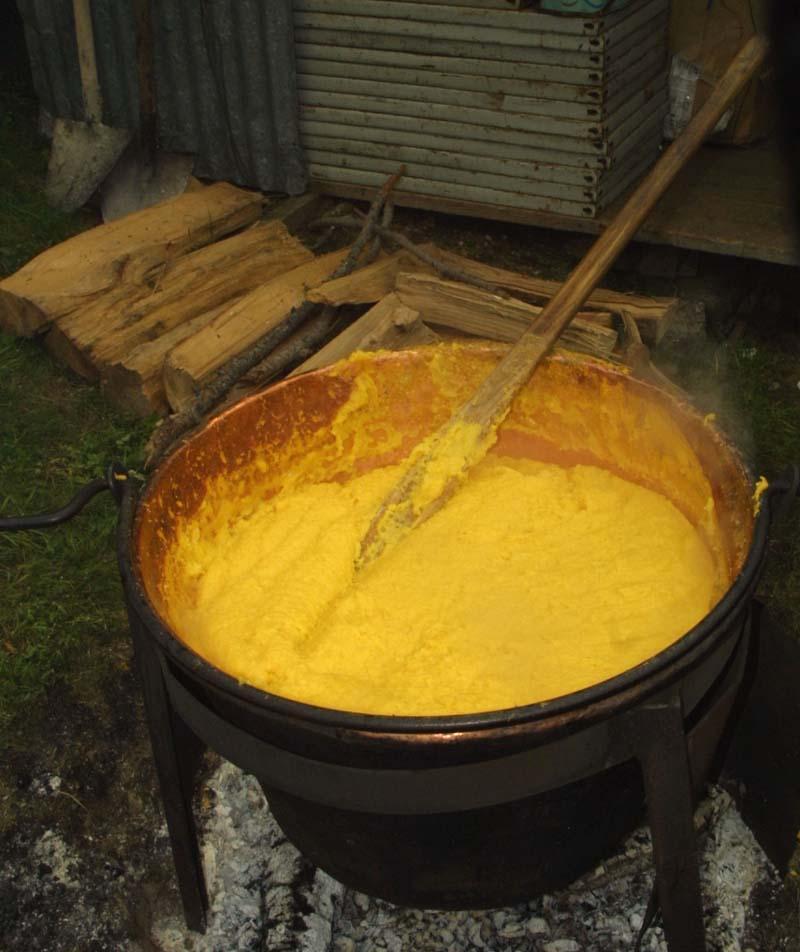 magnablog: « Dammi polenta ed acqua: in tal modo, quanto a felicità ...